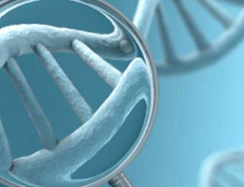 Qué es el diagnóstico Genético Preimplantacional (DGP)