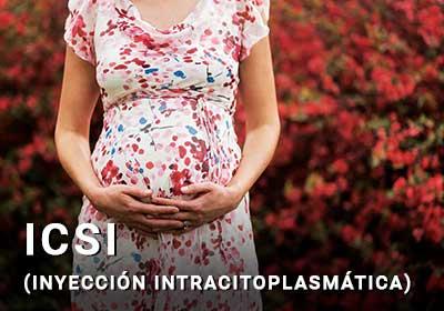 ICSI Inyeccion Intra citoplasmatica